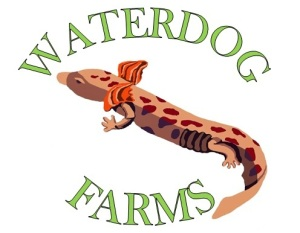 Waterdog Farms Logo